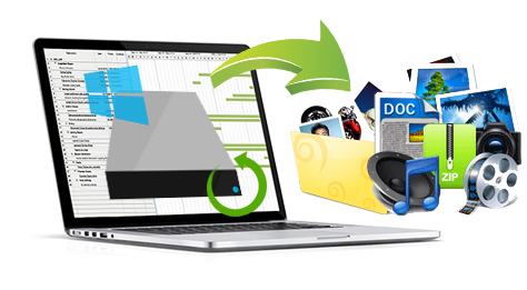 Roots Data Recovery